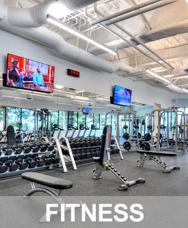 fitness_grey